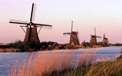De onbekende Nederlandse favorieten